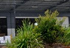 Balgownie Chainlink fencing 13